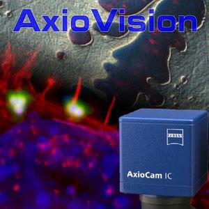 axiovision
