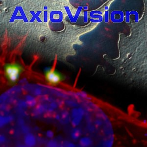 AxioVision SE64 Rel. 4.9.1 Software