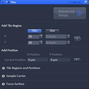 ZEN Module Tiles & Positions