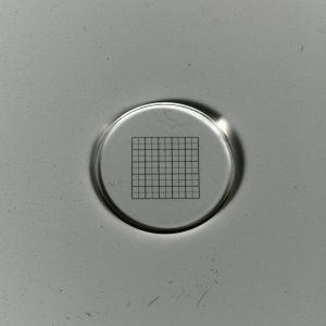 Net micrometer 10x10/5:10, d=21 mm