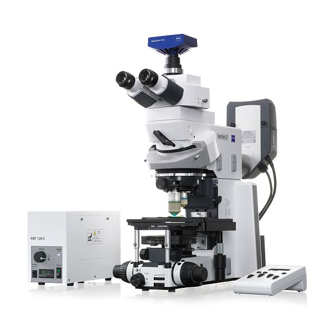 Fixed Stage microscope Axio Examiner.D1